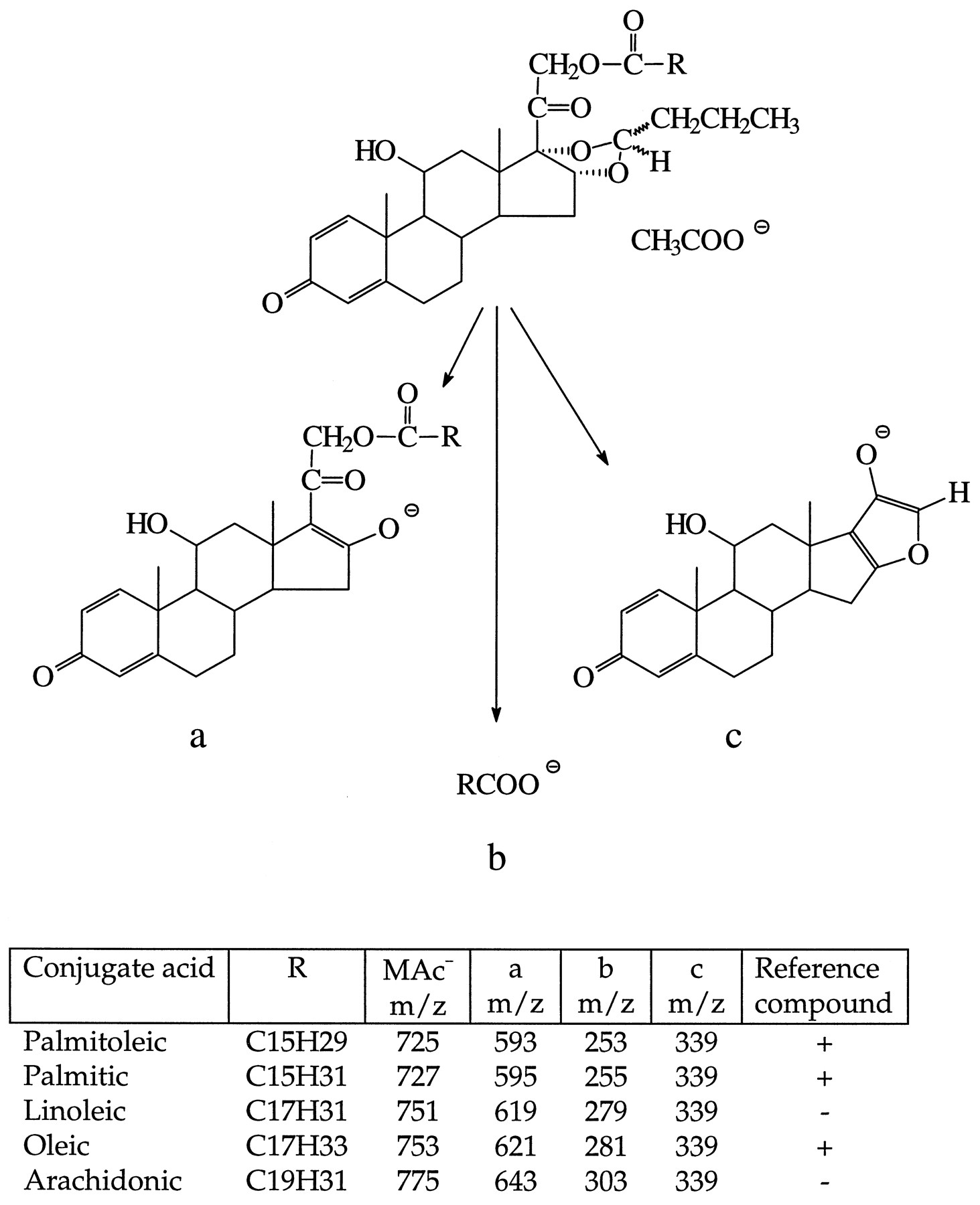 Reversible formation of fatty acid esters of budesonide an download figure pooptronica