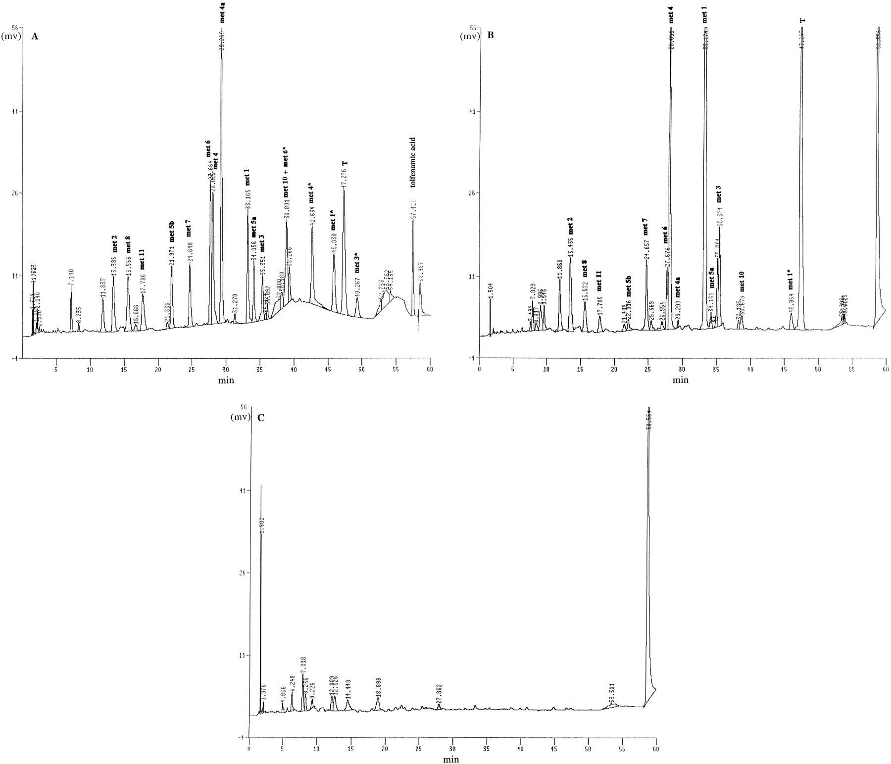 drug metabolism phase 1 and phase 2 pdf