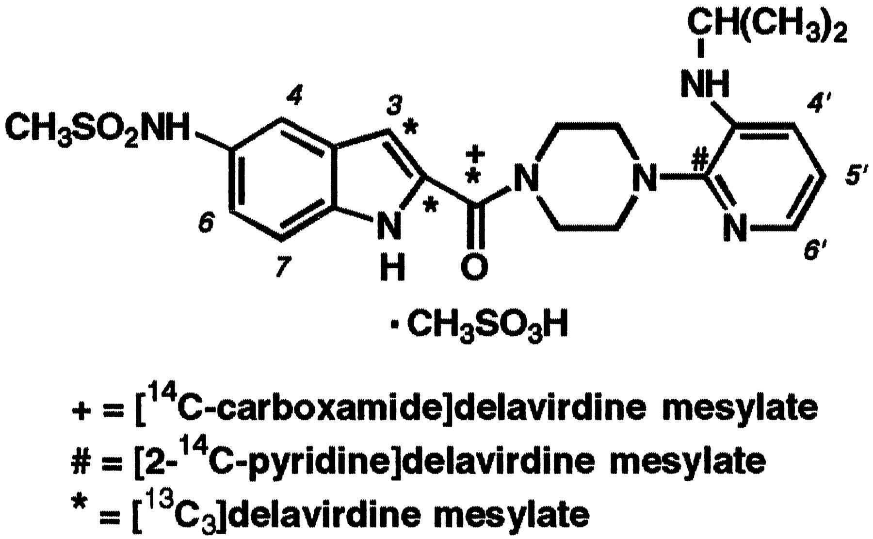 Metabolism of the HIV-1 Reverse Transcriptase Inhibitor