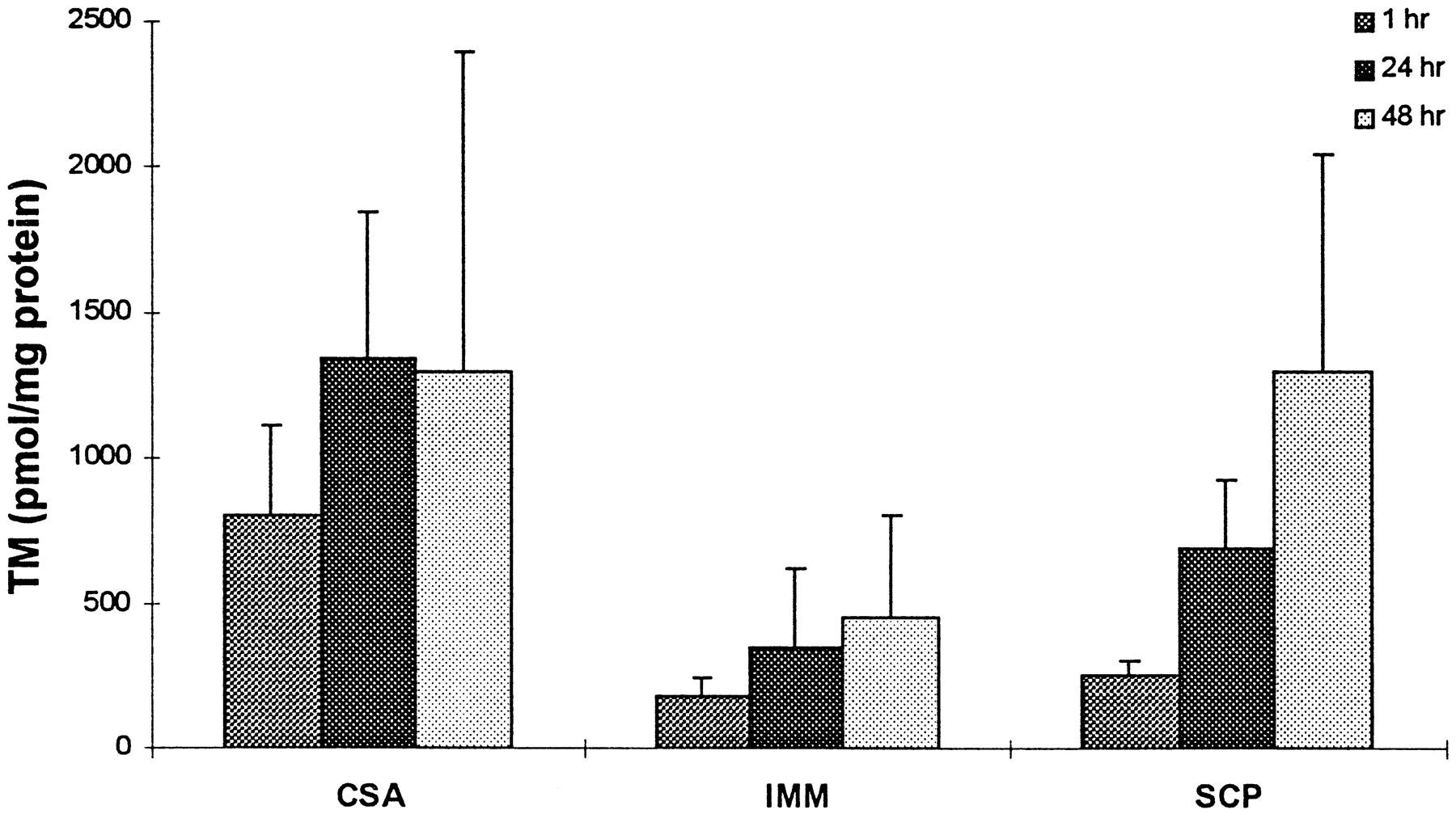Human and Rat Lung Biotransformation of Cyclosporin A and