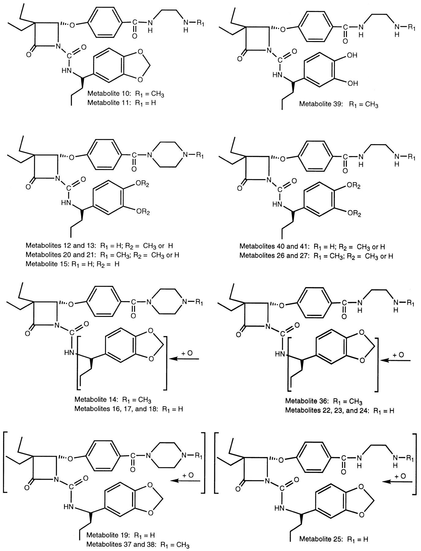 Orally Active Inhibitors Of Human Leukocyte Elastase  III