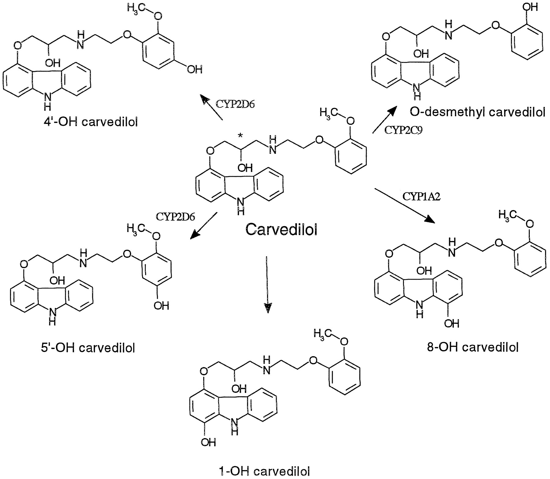 Carvedilol Oral : Uses, Side Effects, Interactions ...