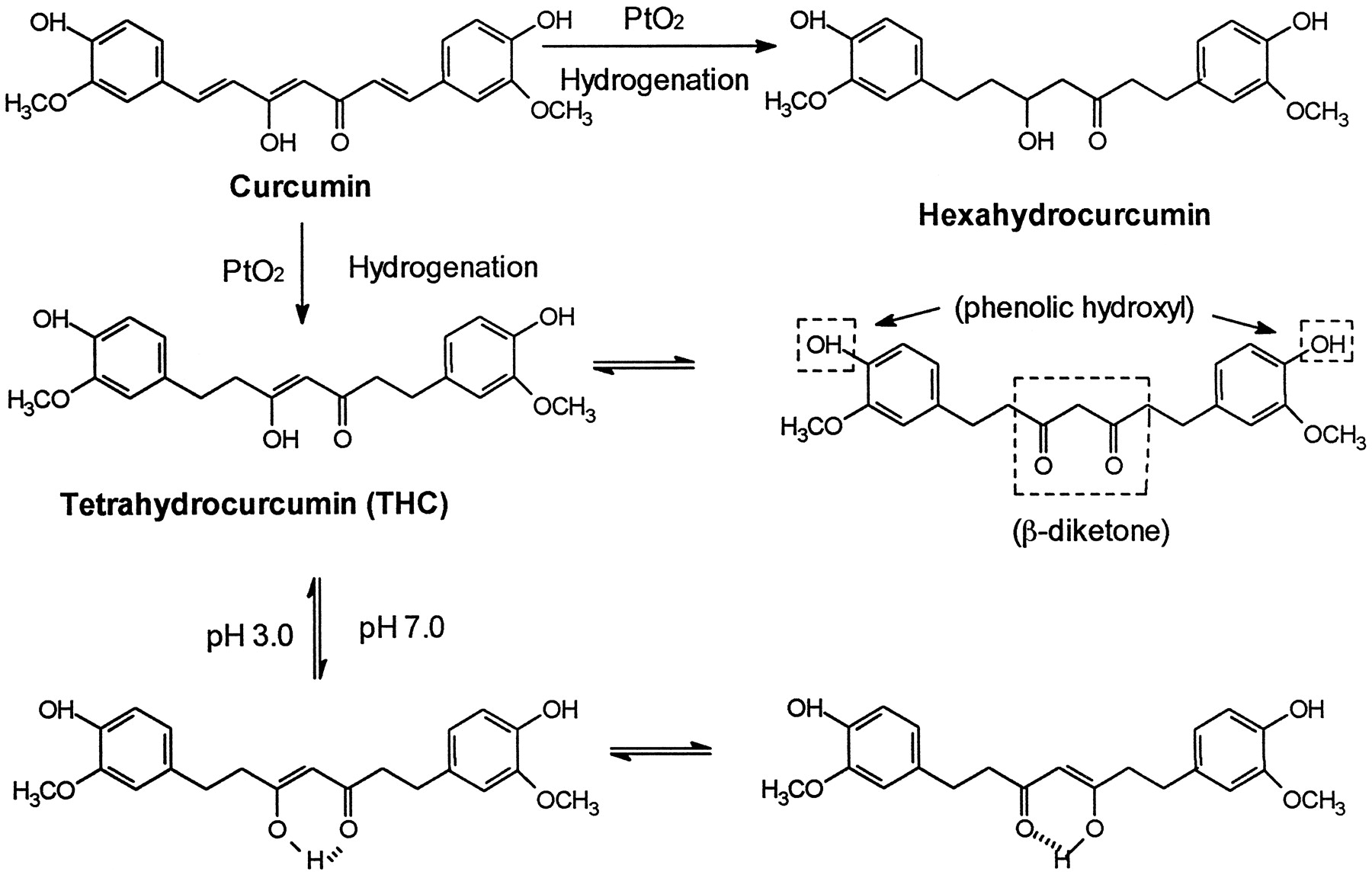 how to clean thc metabolites
