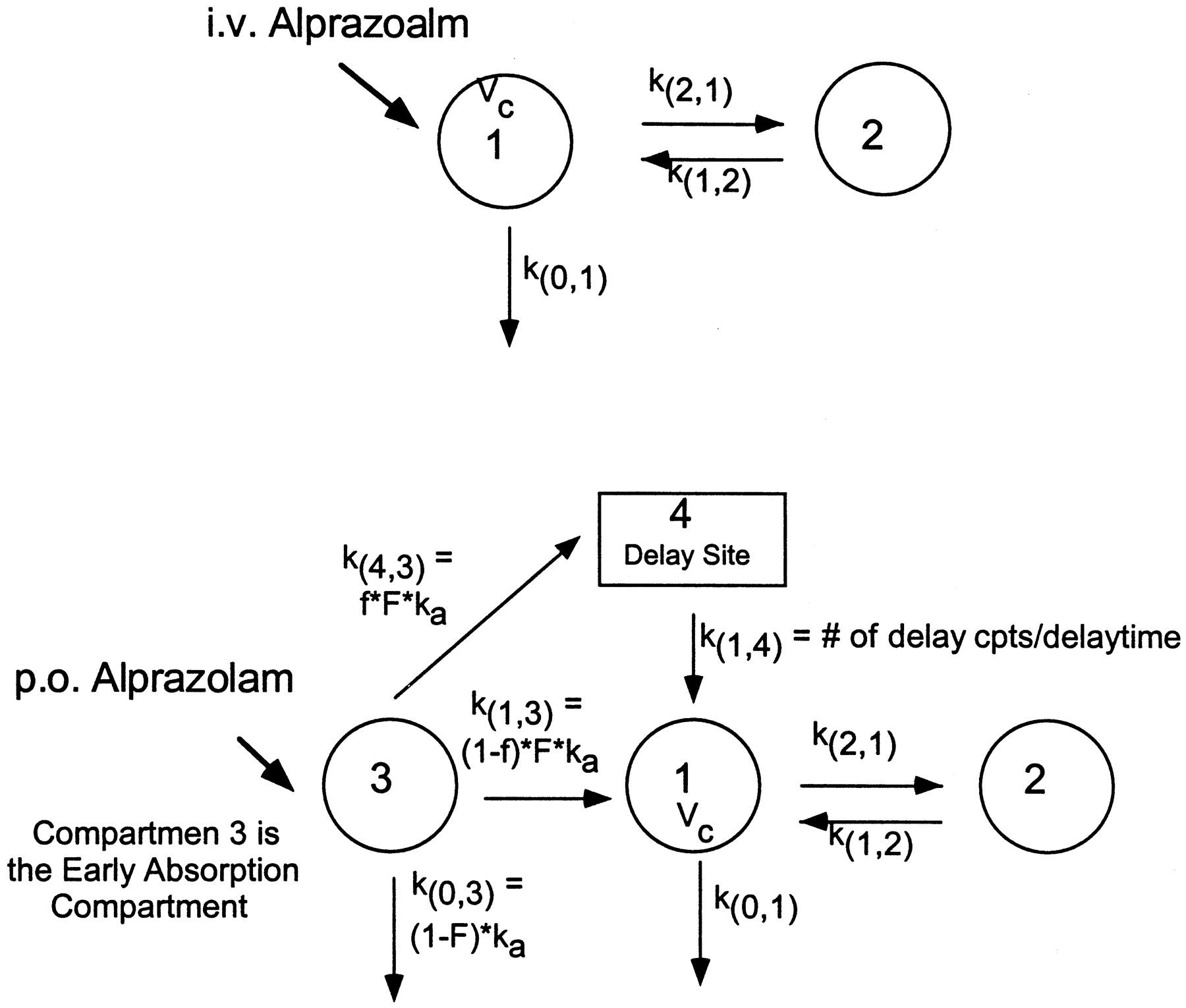 A Double-Peak Phenomenon in the Pharmacokinetics of
