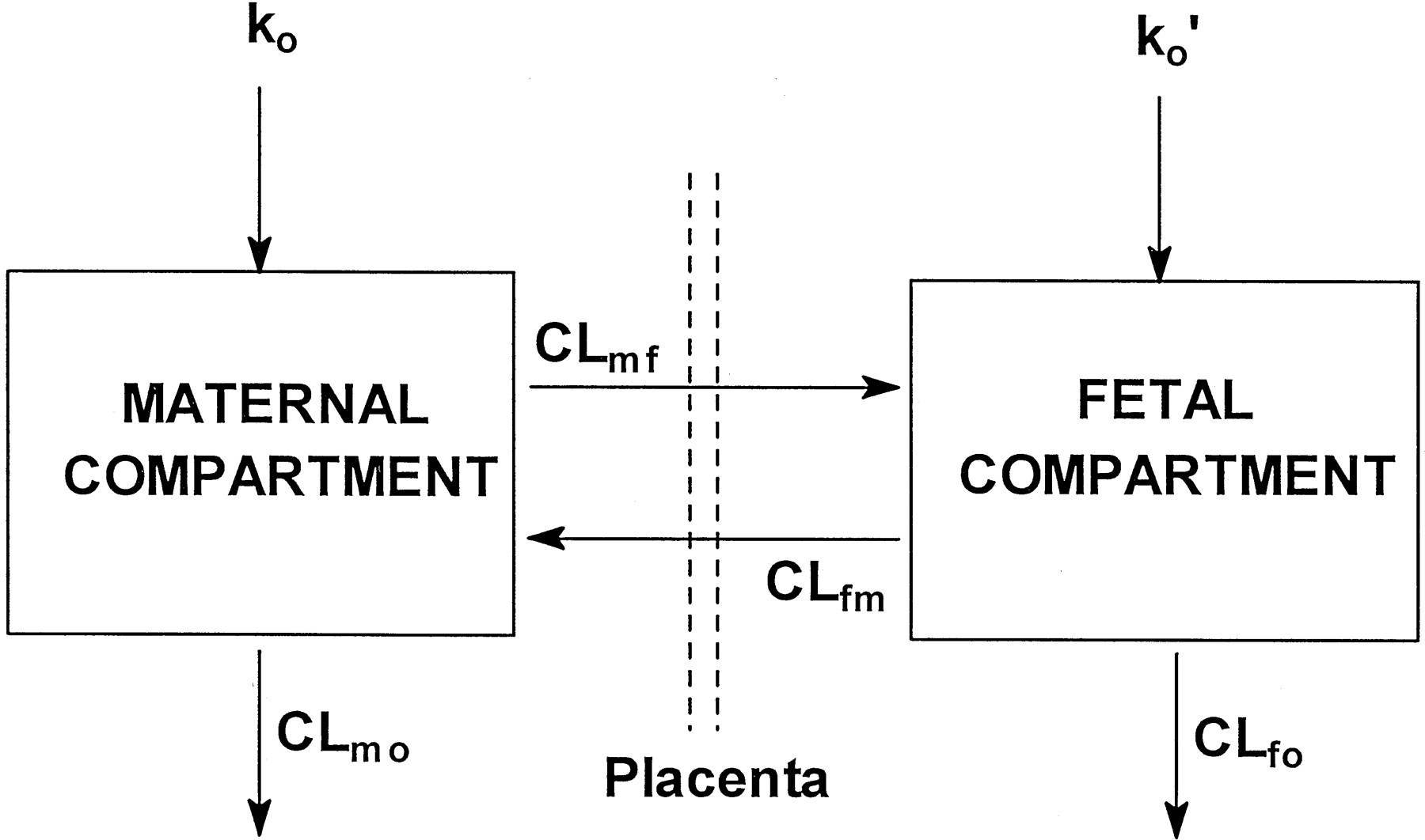 Diphenhydramine disposition in the sheep maternal placental fetal download figure pooptronica Image collections
