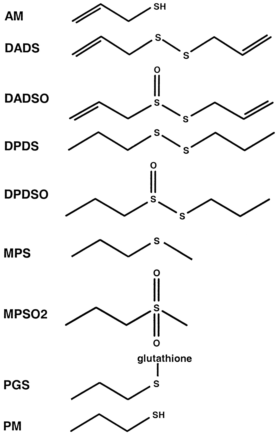 Rat Liver Diagram Schematic Wiring Diagrams