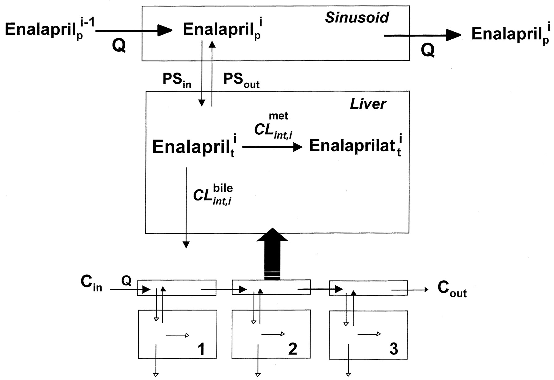 Effect of Zonal Transport and Metabolism on Hepatic Removal ...