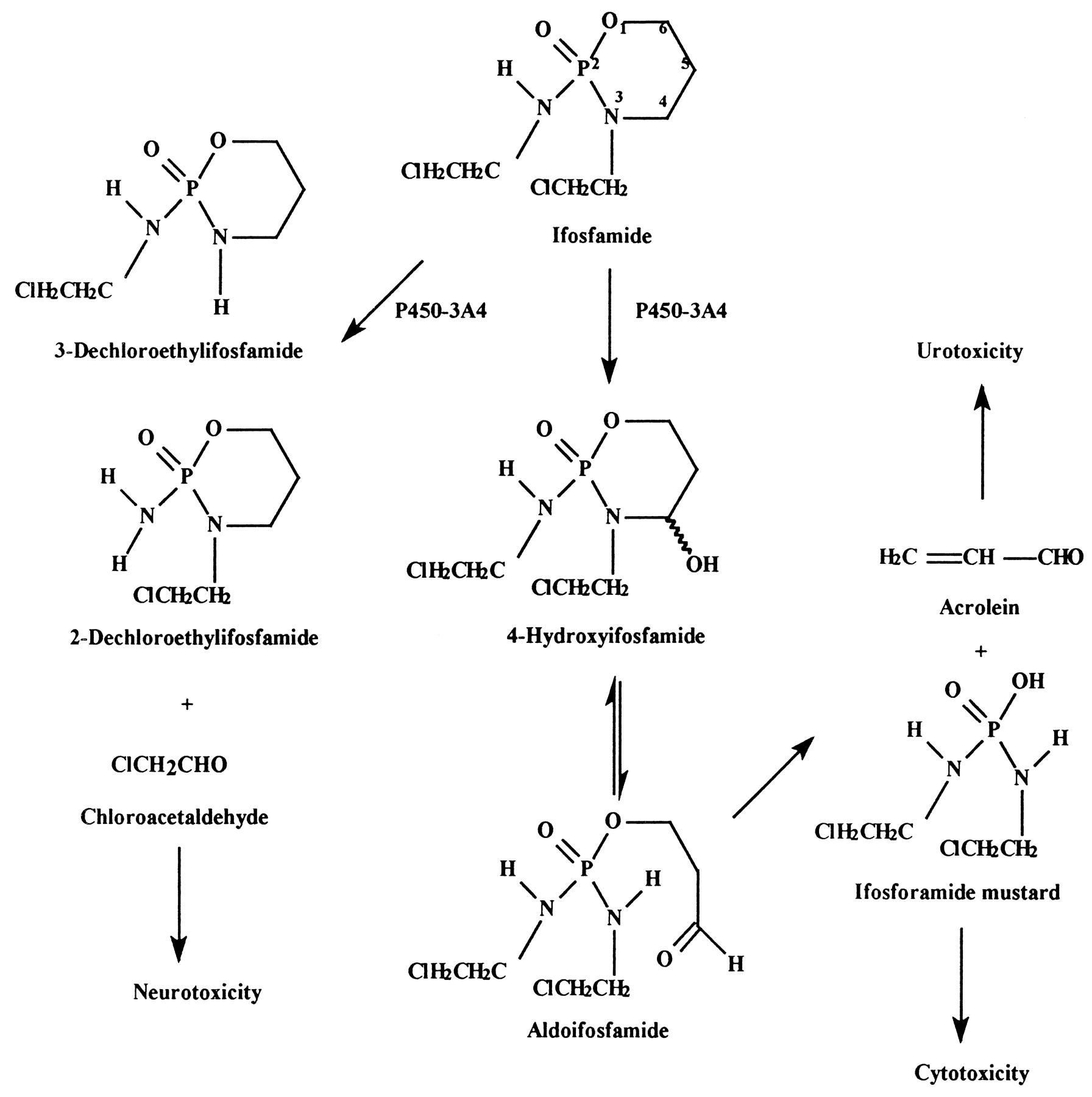 reaktion acrolein mesna