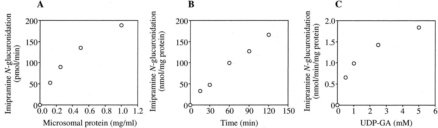 Imipramine N Glucuronidation In Human Liver Microsomes Biphasic