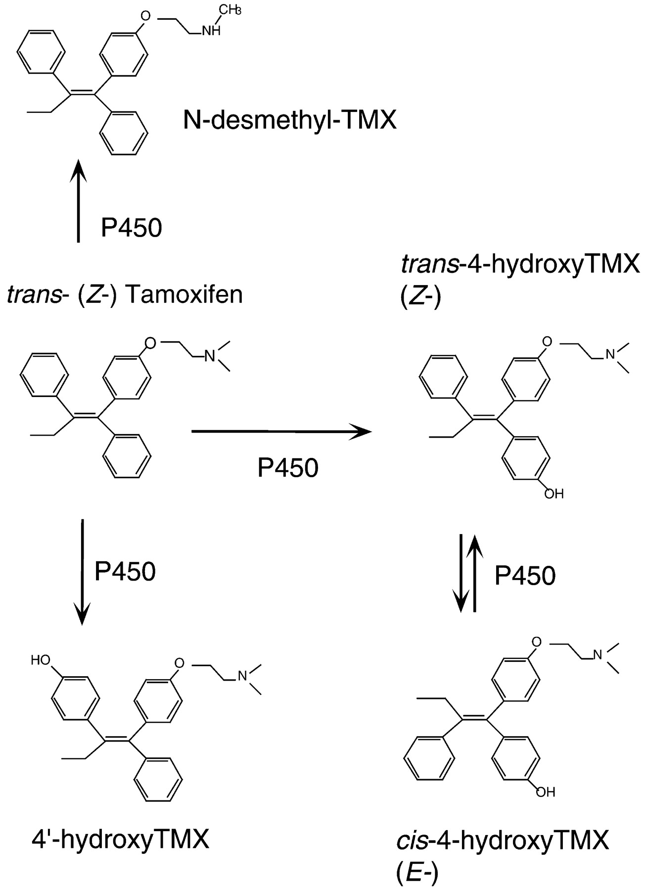 Nolvadex research chem  Water-multi ml
