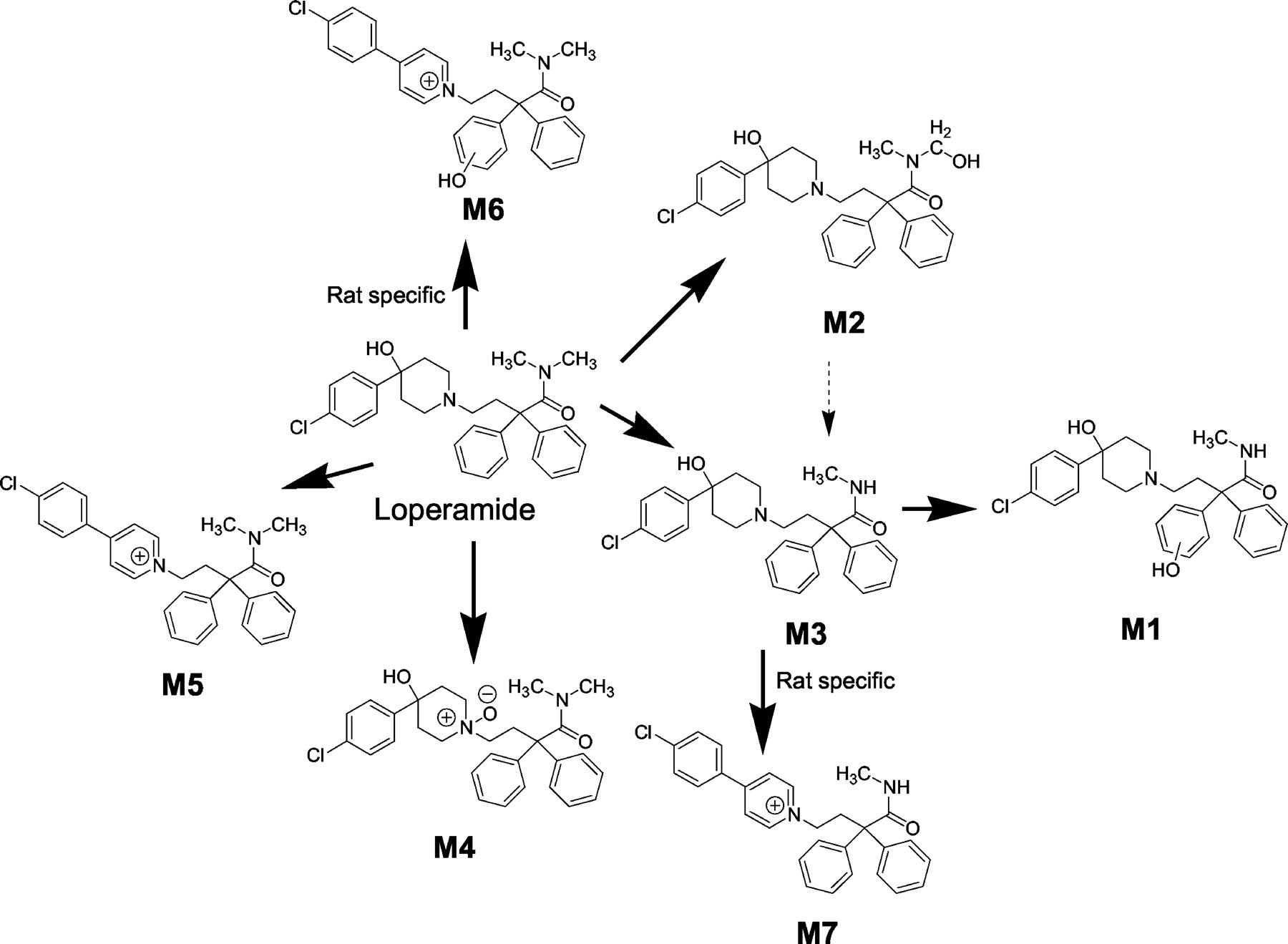 Loperamide dia tabs drug study