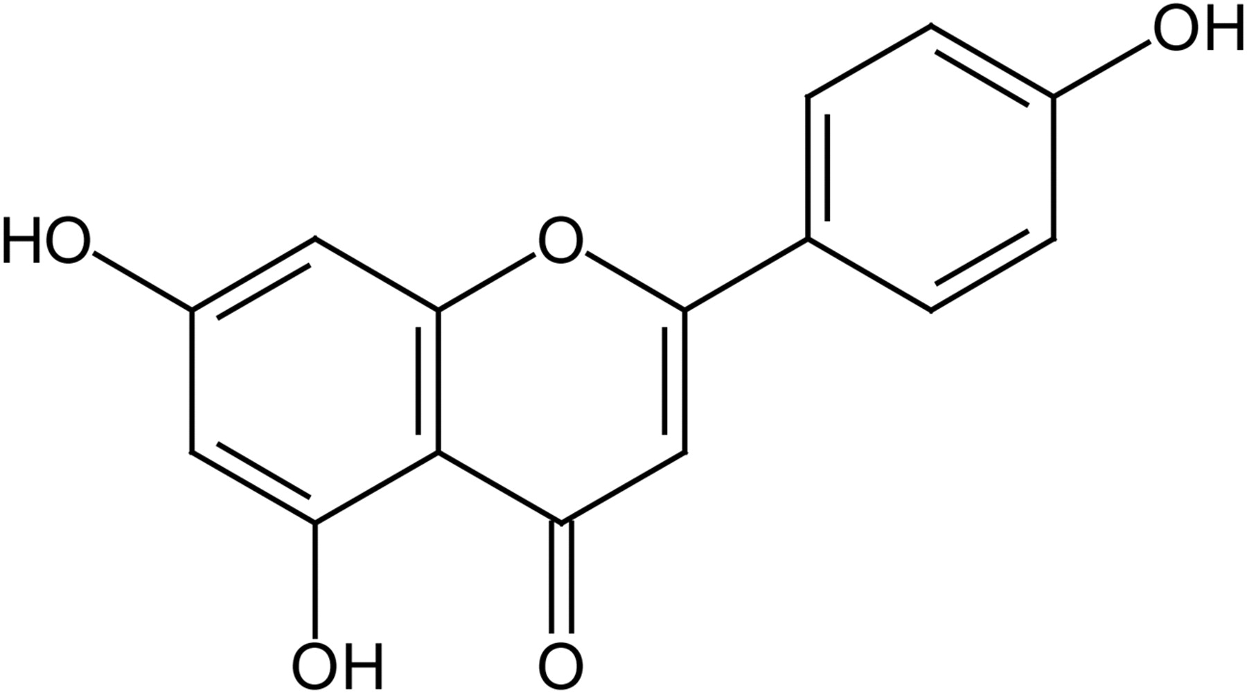 pharmacokinetics and metabolism of apigenin in female and