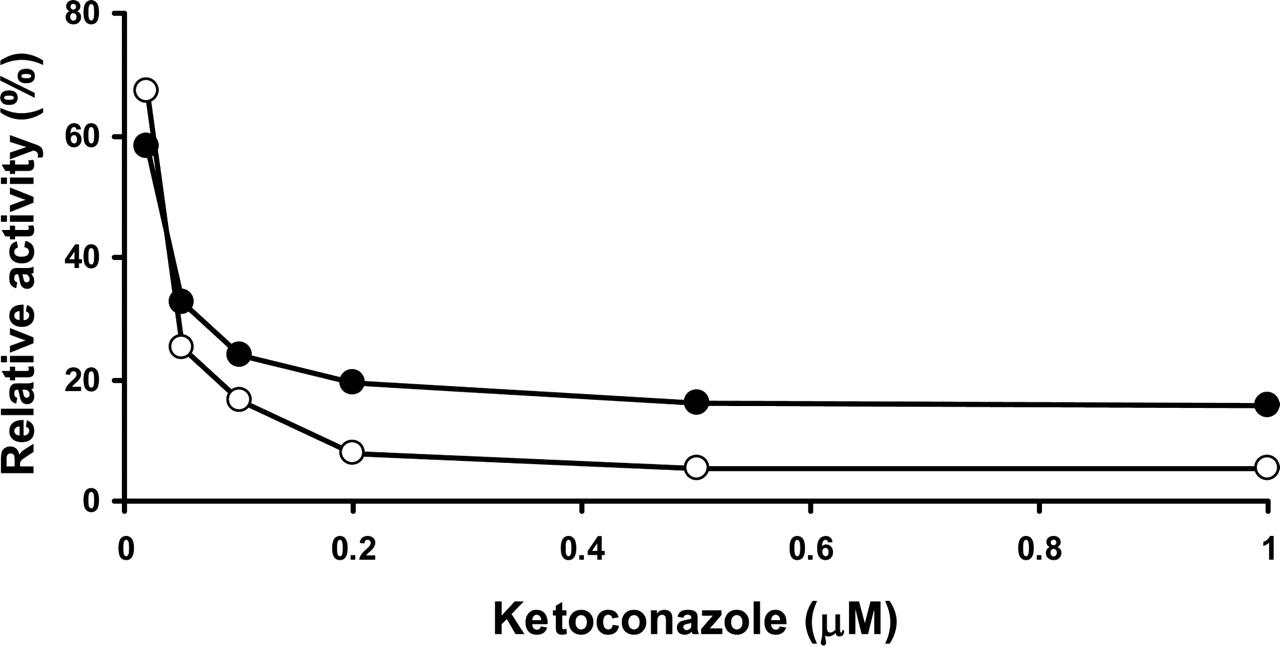 CHARACTERIZATION OF TESTOSTERONE 11β-HYDROXYLATION CATALYZED BY