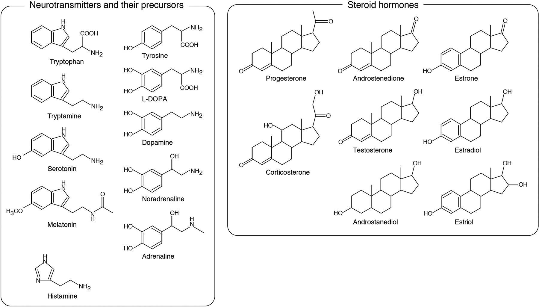 Inhibitory Effects of Neurotransmitters and Steroids on