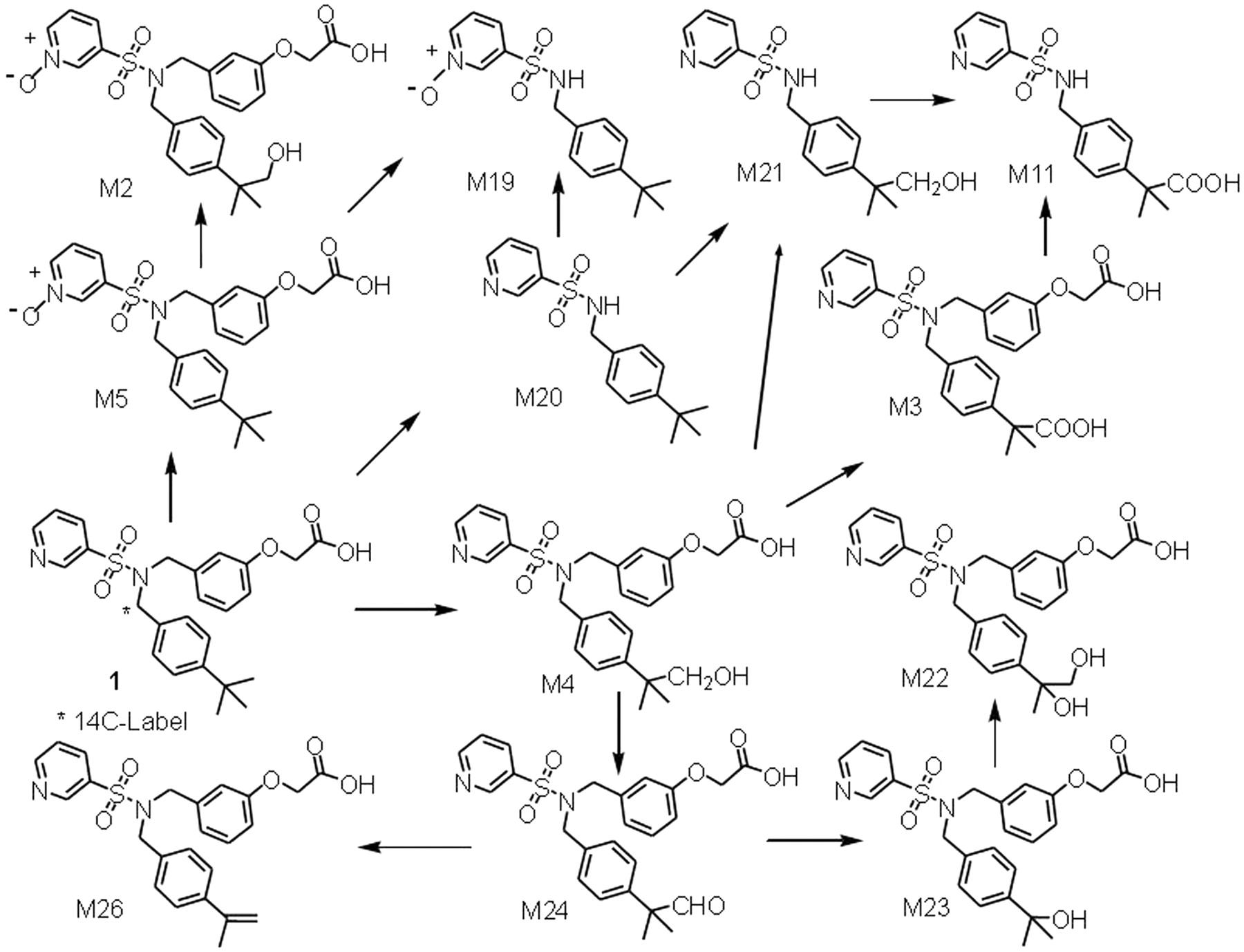 CYP2C8- and CYP3A-Mediated C-Demethylation of (3-{[(4-tert
