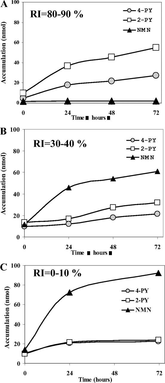 Aldehyde Oxidase-Catalyzed Metabolism of N1