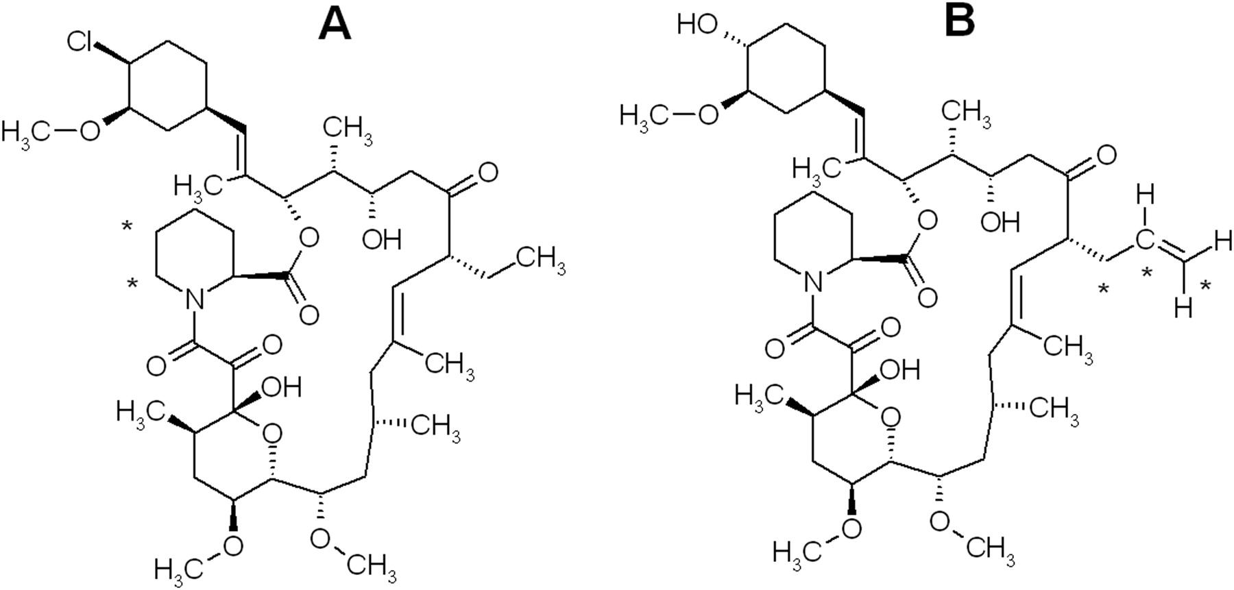 Binding of Pimecrolimus and Tacrolimus to Skin and Plasma