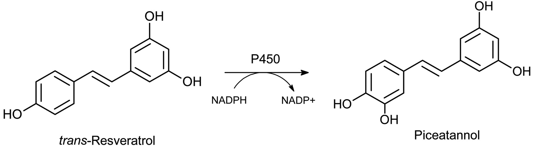 Generation Of The Human Metabolite Piceatannol From The Anticancer