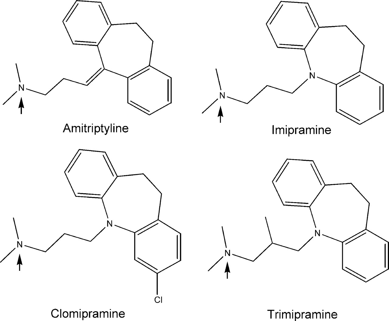 imipramine drug study Learn about tofranil (imipramine) may treat, uses, dosage, side effects, drug interactions, warnings, patient labeling, reviews, and related medications.