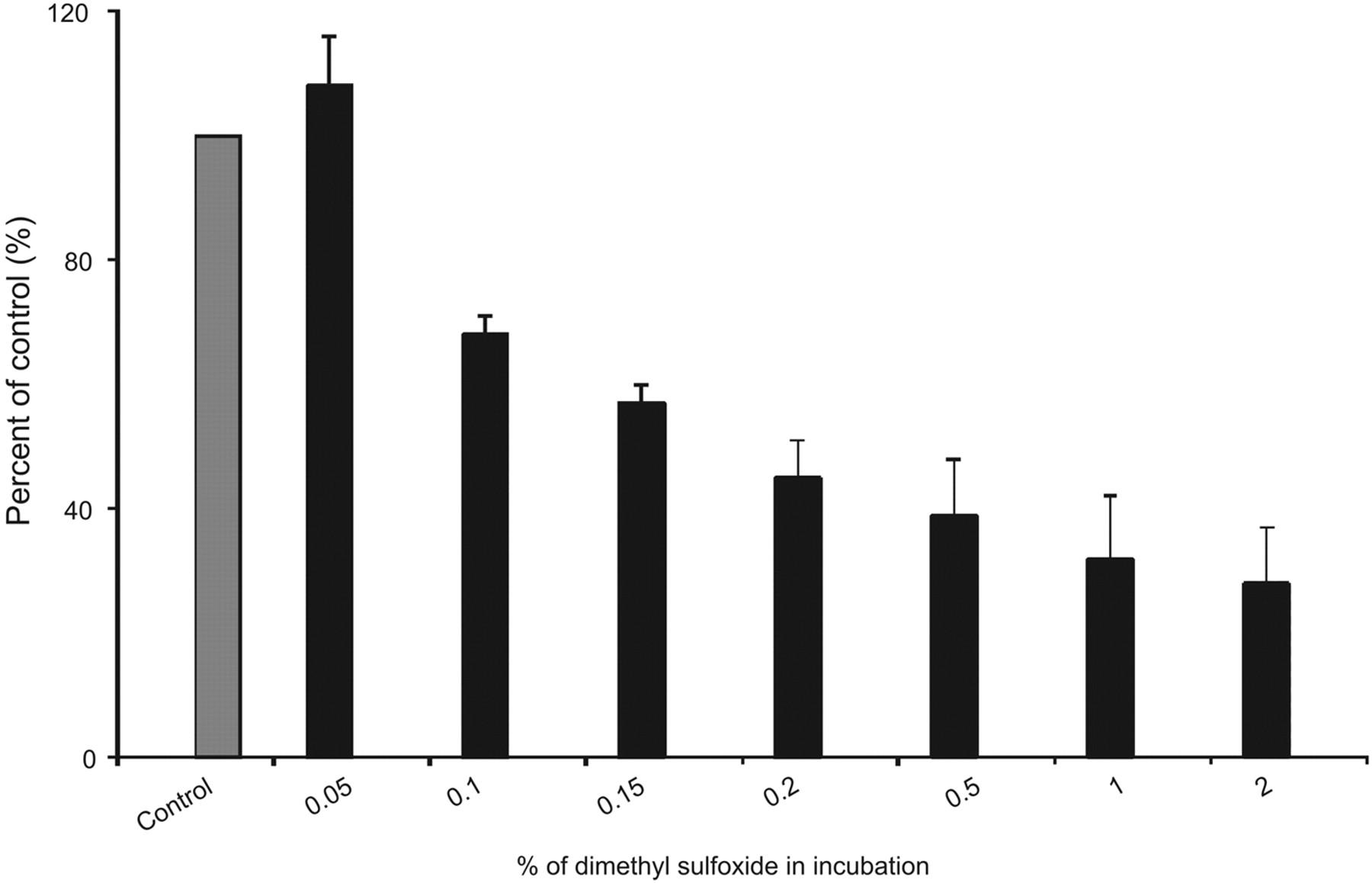 Effect of Dimethyl Sulfoxide on In Vitro Cytochrome P4501A2