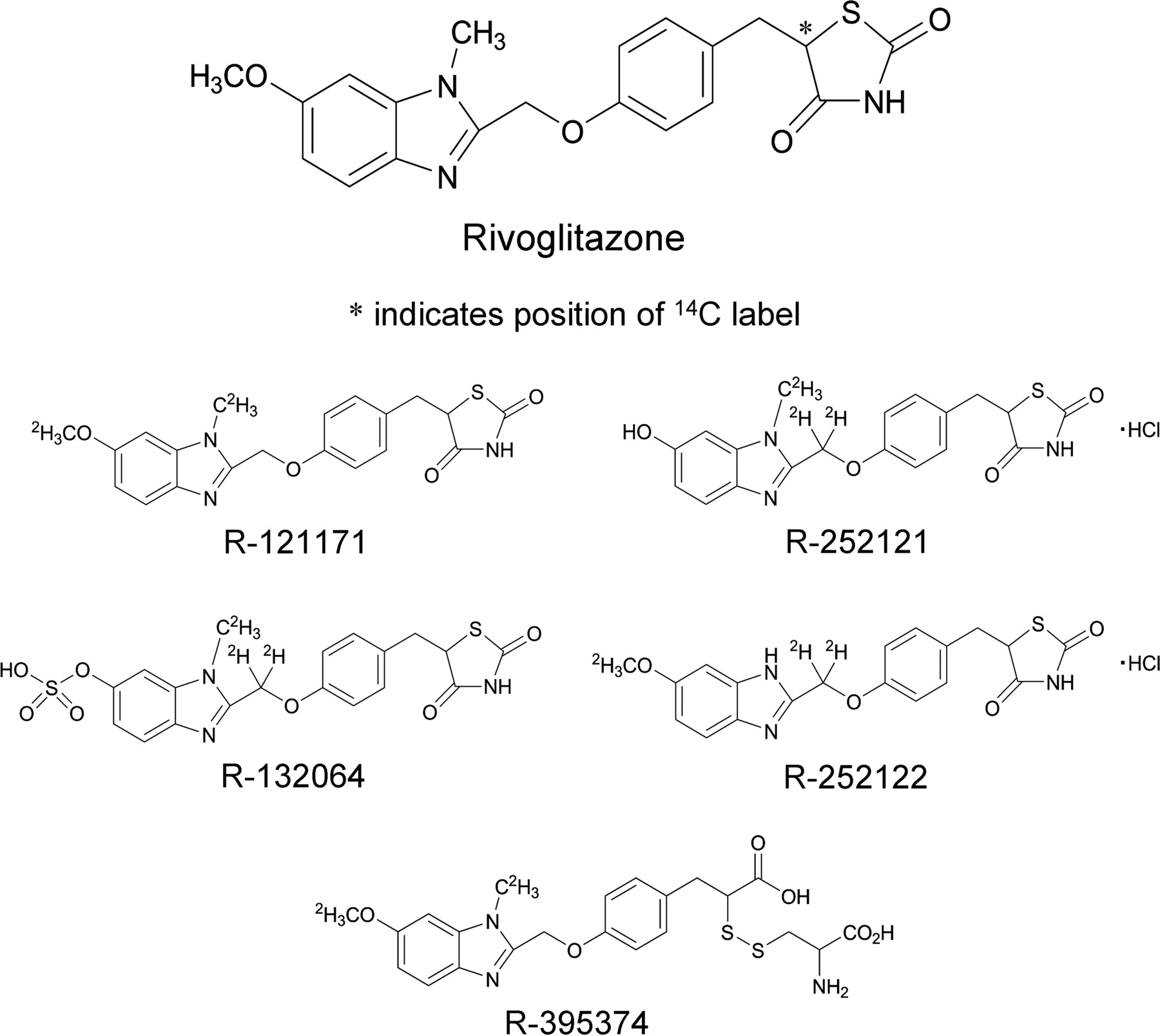Pharmacokinetics, Metabolism, and Disposition of Rivoglitazone, a