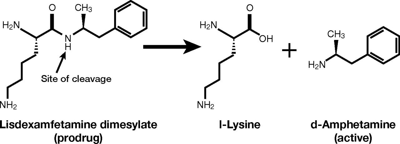 Pharmacokinetics of Lisdexamfetamine Dimesylate after
