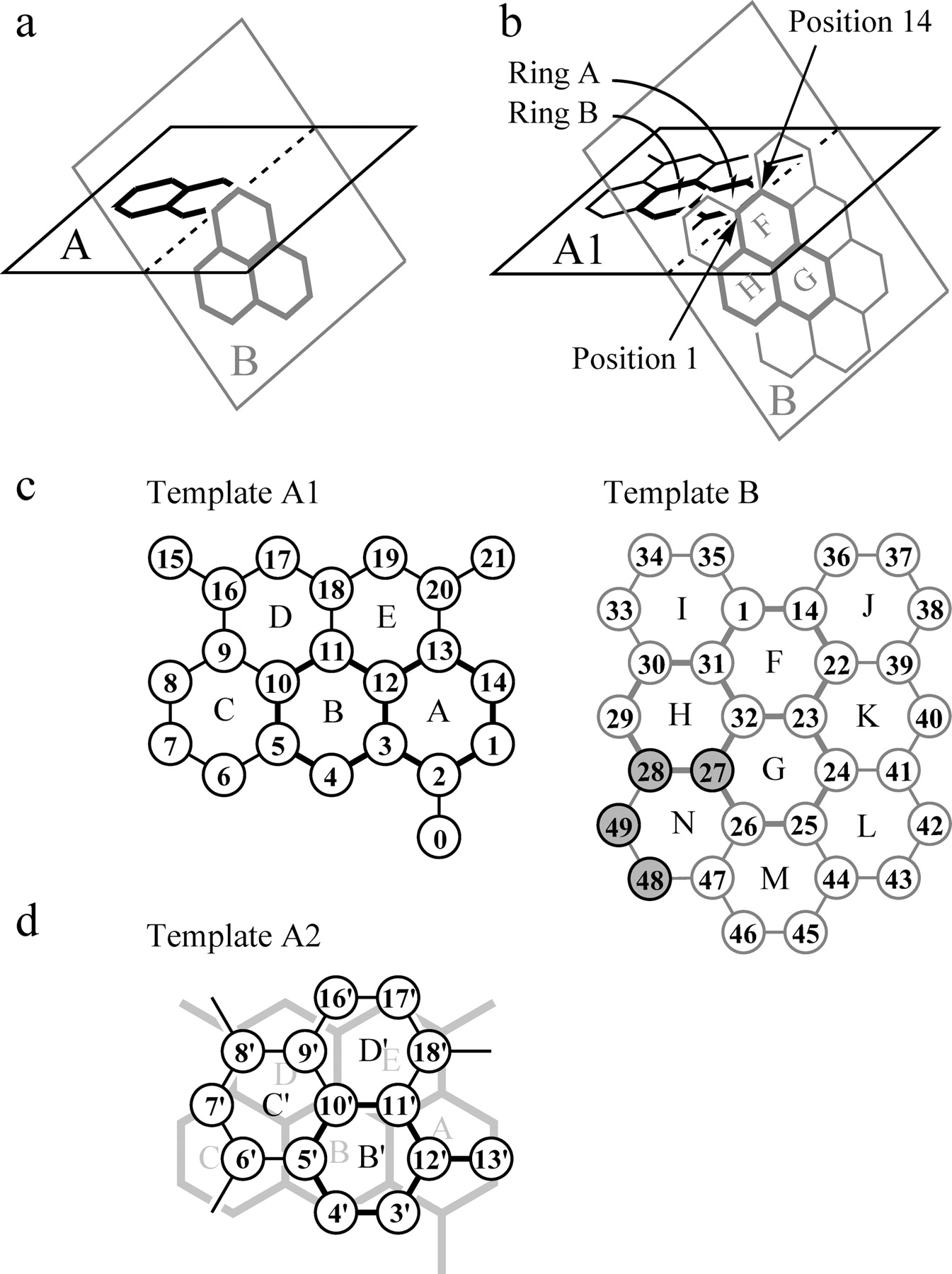 F2.large unimolecular and bimolecular binding system for the prediction of on property management work order template