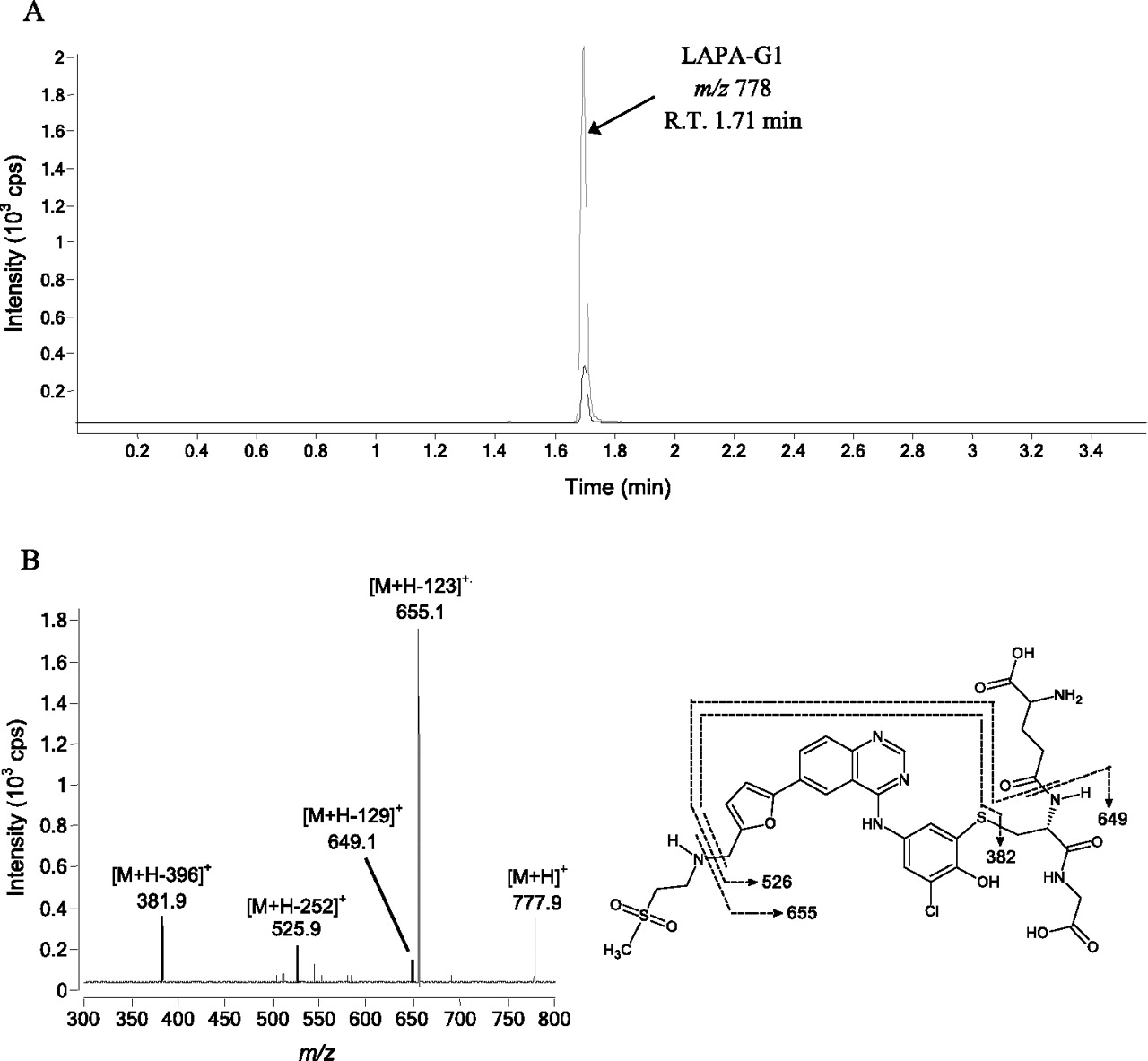 Interaction of Lapatinib with Cytochrome P450 3A5 | Drug Metabolism