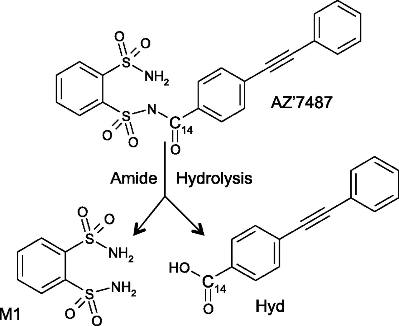 formation of amides Amide bond formation and usually activated as an ester6 as well as providing a brief overview on the use of solid-supported strategies for the formation of amides.