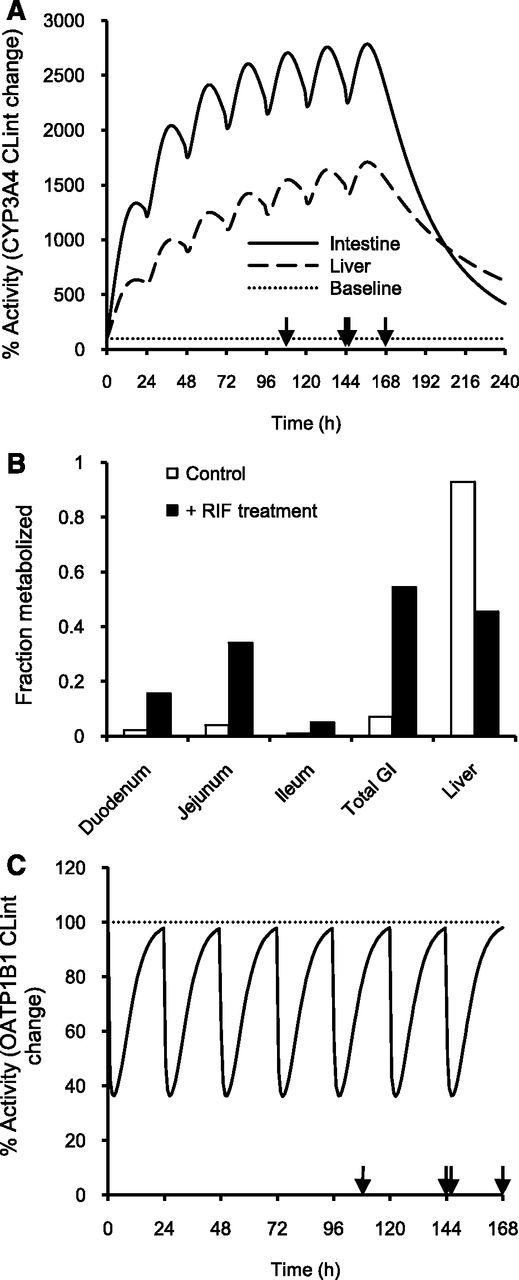 Quantitative Prediction of Repaglinide-Rifampicin Complex Drug ...
