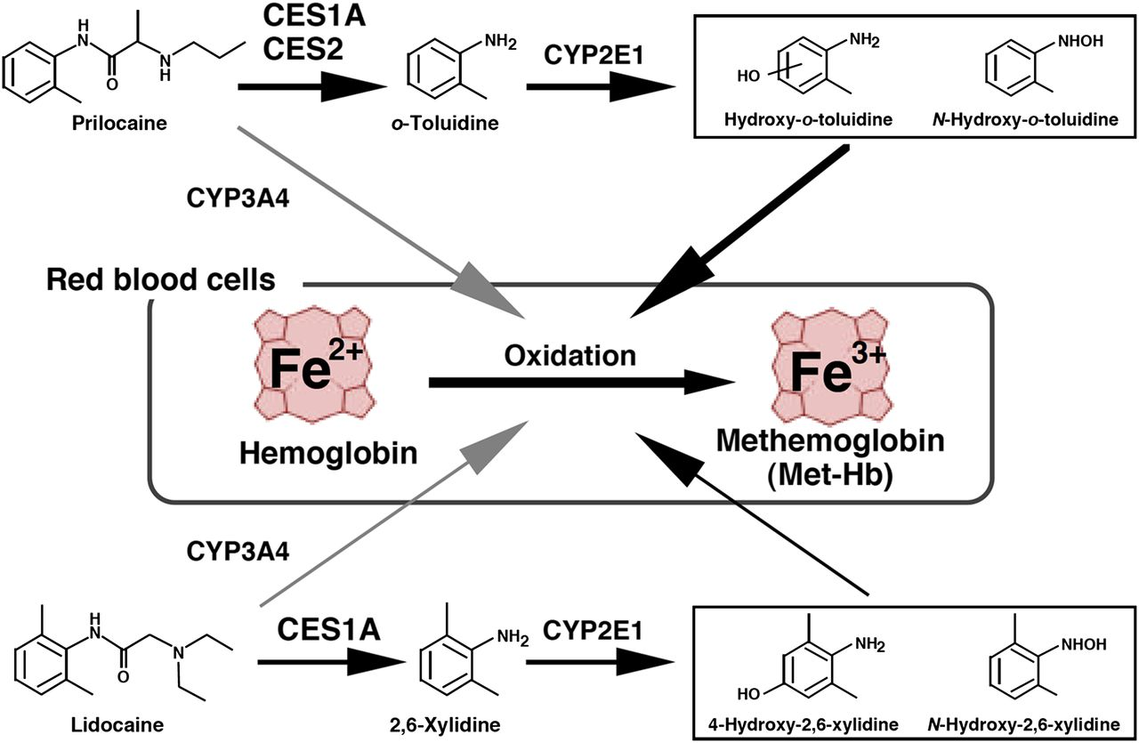 online Boron fluoride and its compounds as catalysts in organic chemistry, (International series of monographs