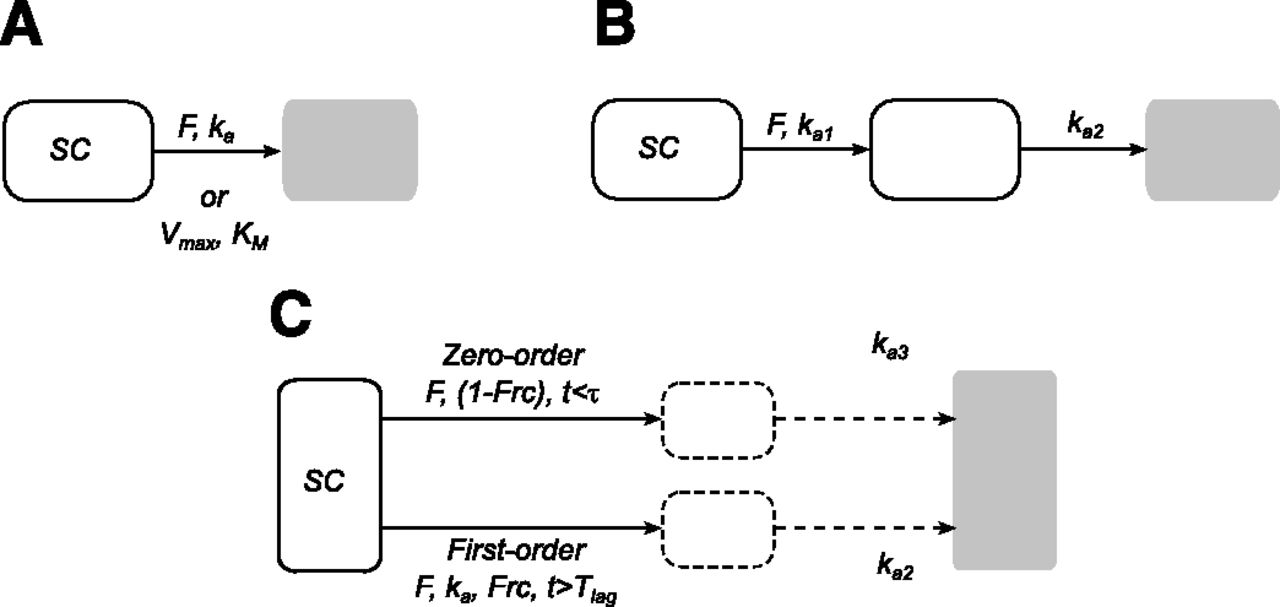 Pharmacokinetic Modeling Of The Subcutaneous Absorption Of