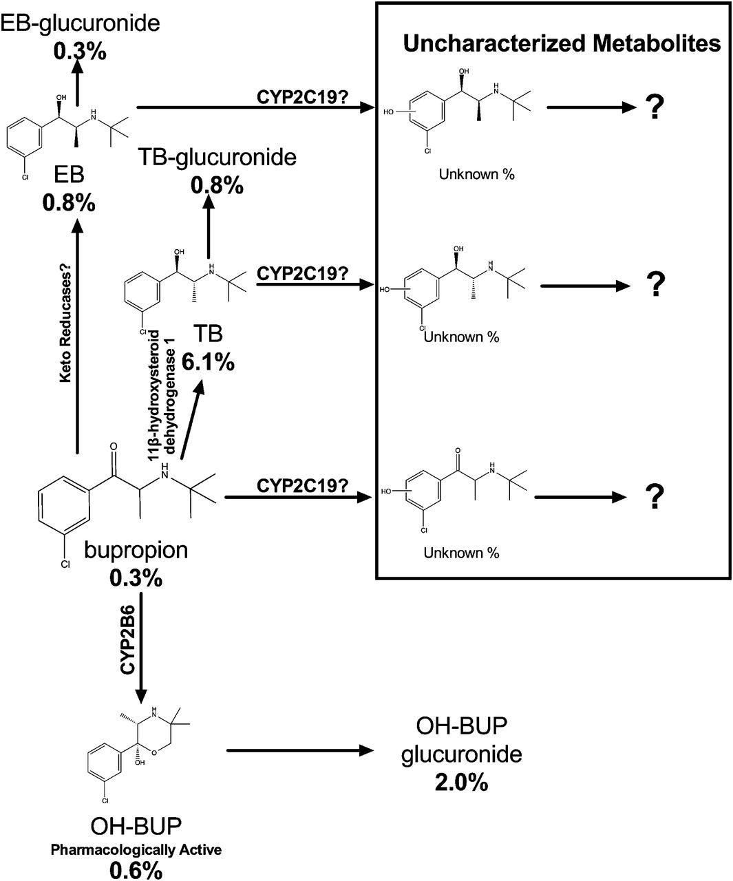 Ernafil 100mg sildenafil glimepiride 2mg metformin 500mg in cipla