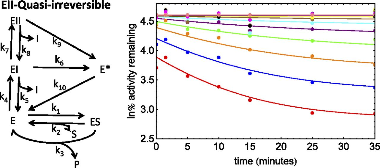 A Numerical Method for Analysis of In Vitro Time-Dependent