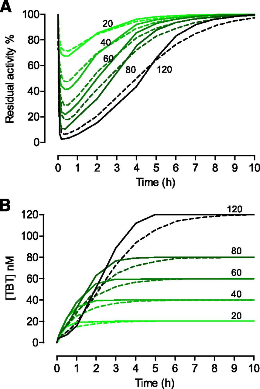 Stereoselective Inhibition of Human Butyrylcholinesterase by