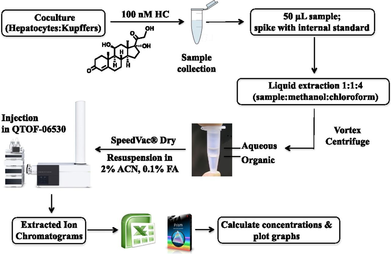 Metabolite profiling and pharmacokinetic evaluation of download figure falaconquin