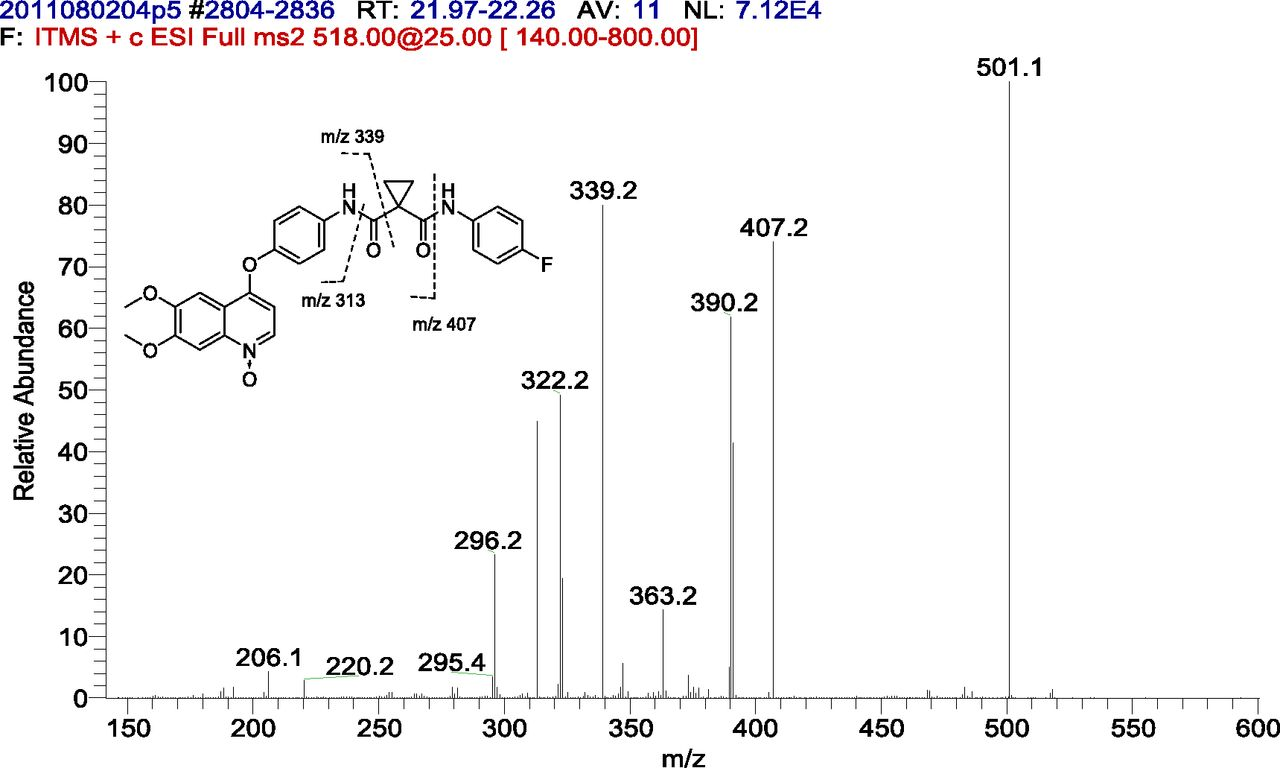 Metabolism and Disposition of Cabozantinib in Healthy Male