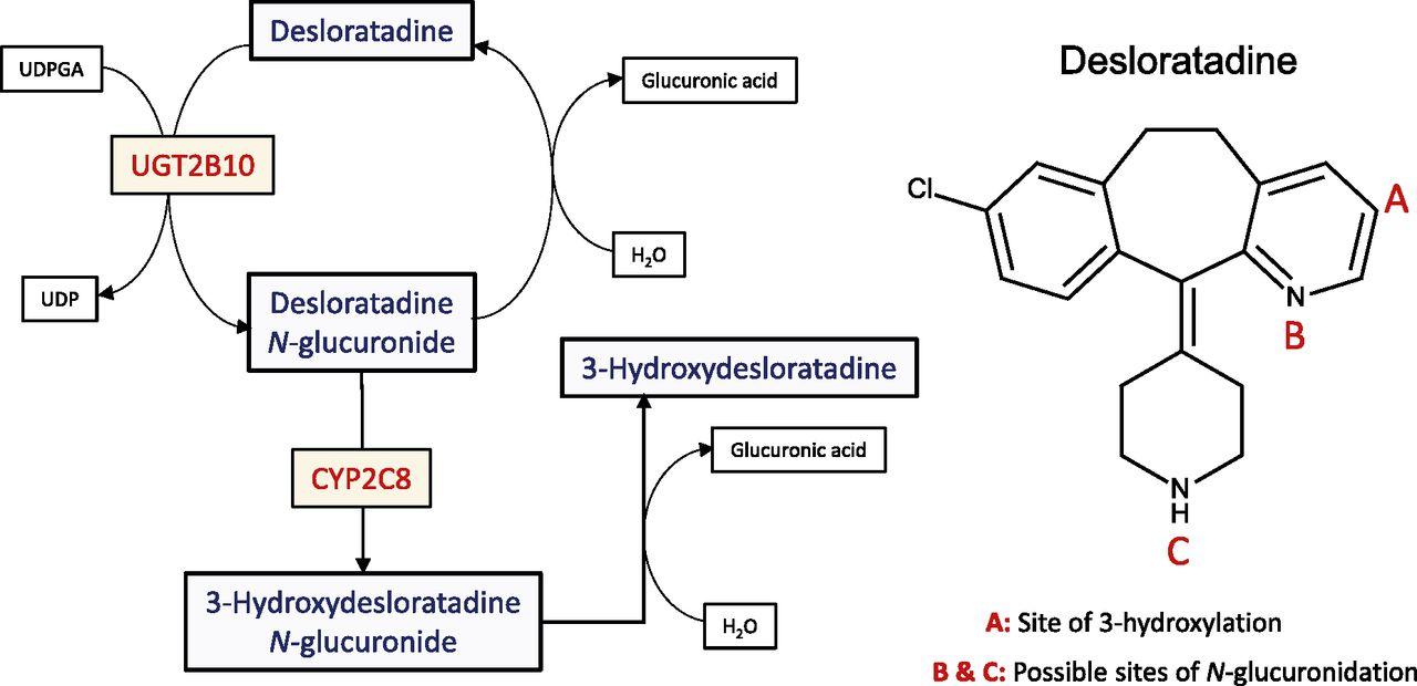 Clarinex Vs Desloratadine