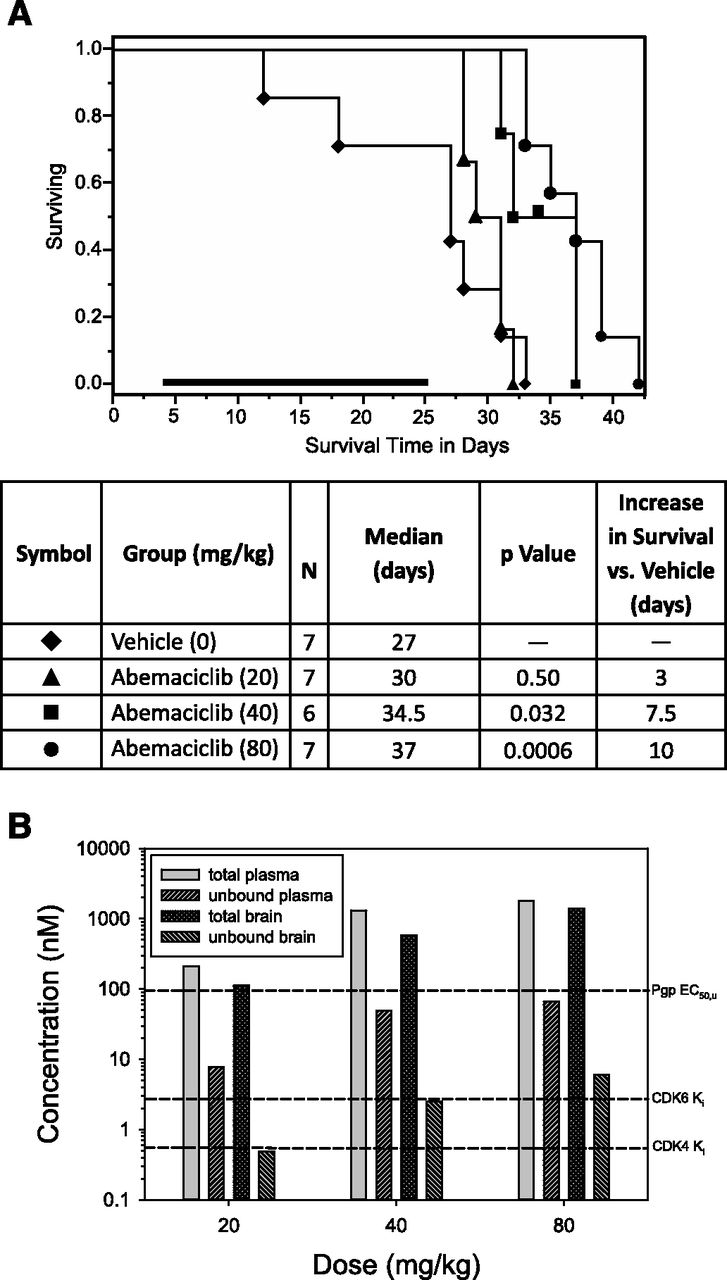 Brain Exposure of Two Selective Dual CDK4 and CDK6