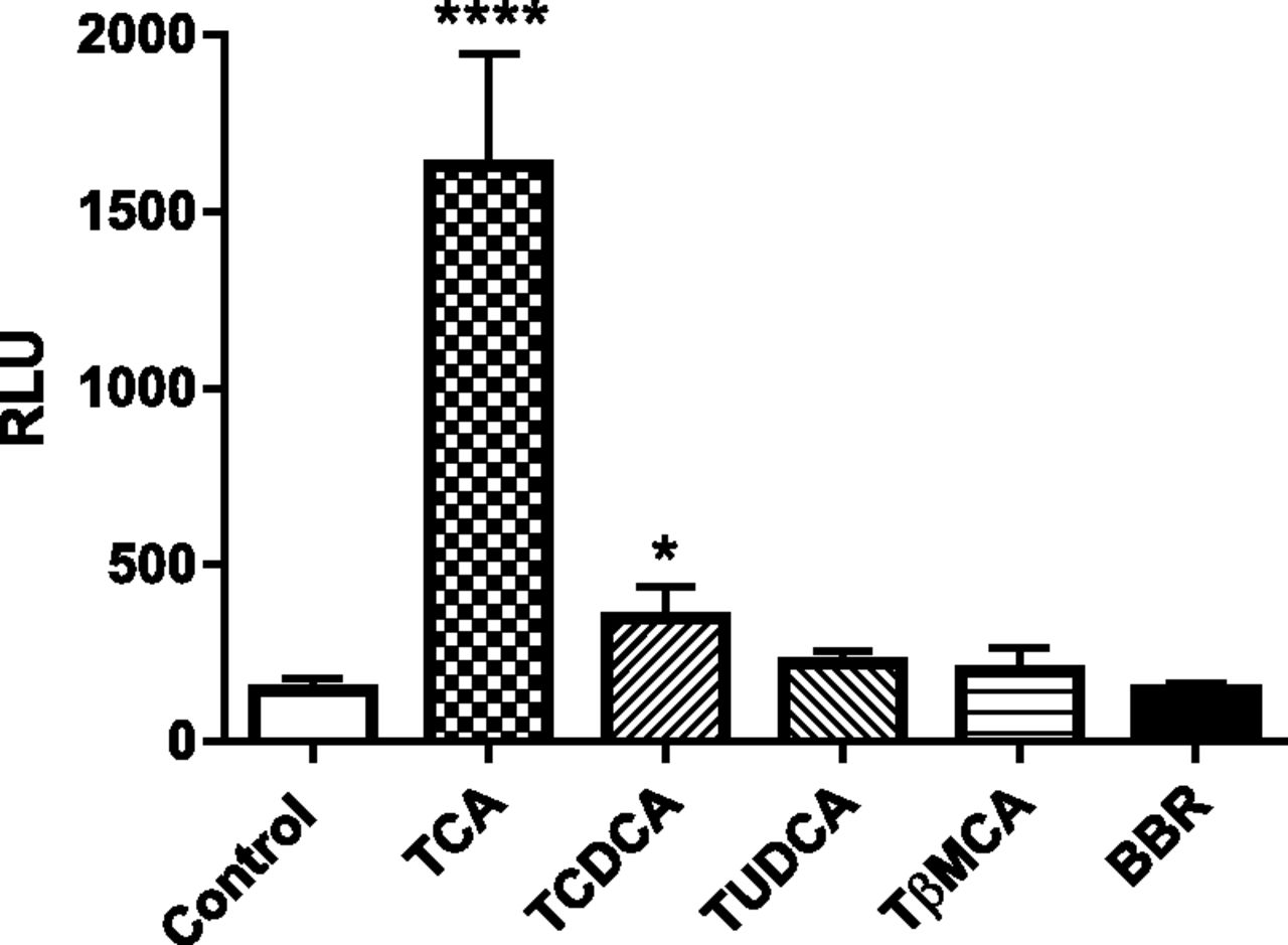 Berberine Directly Affects the Gut Microbiota to Promote Intestinal