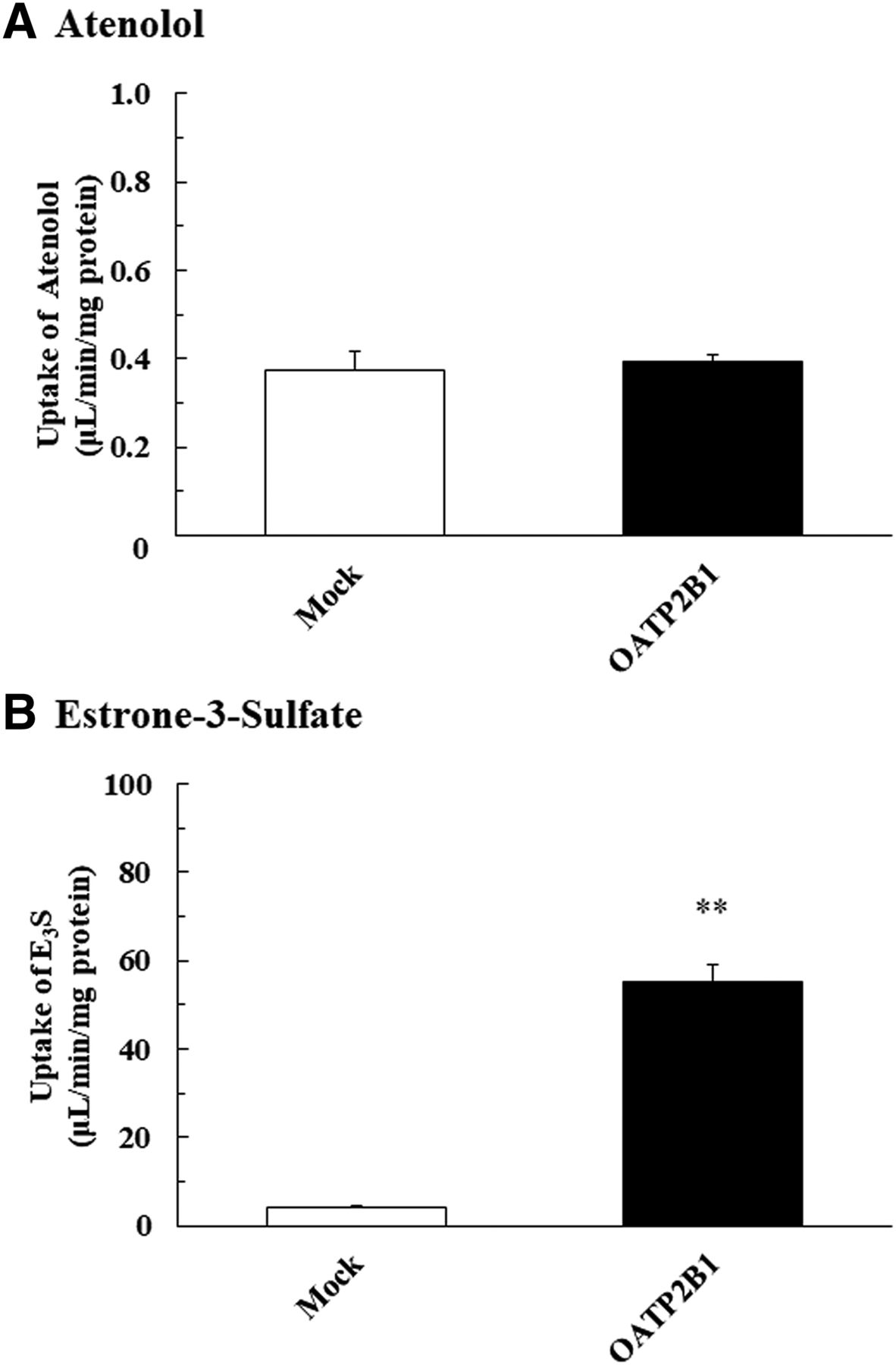 Effect of Osmolality on the Pharmacokinetic Interaction between
